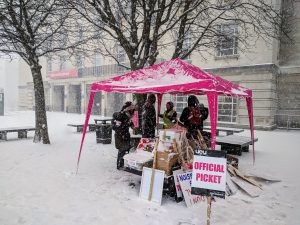 picket organisers under a pink gazebo in a blizzard